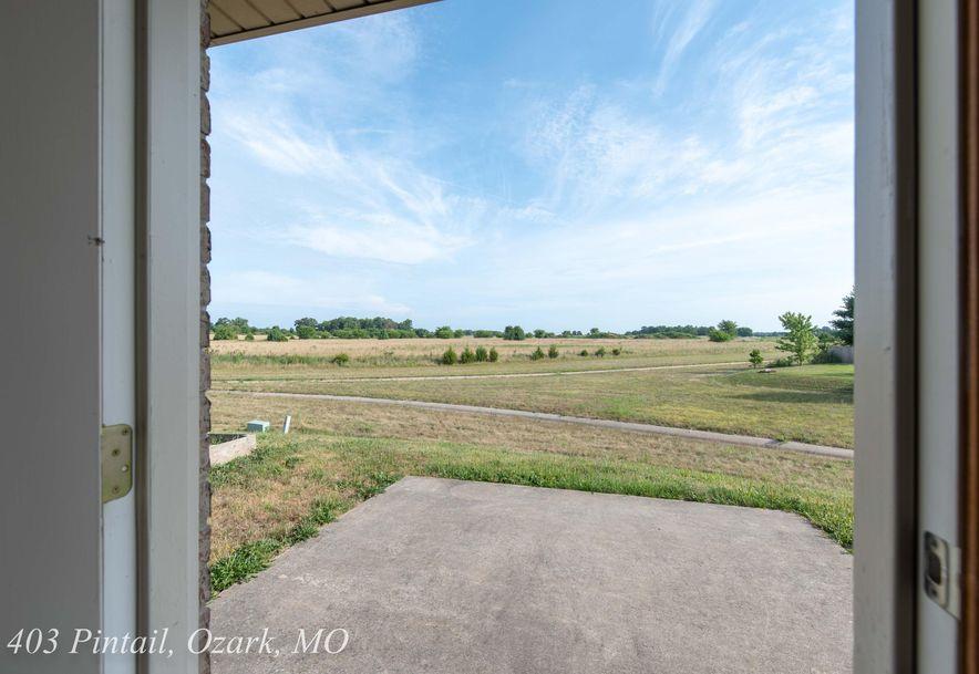 403 East Pintail Drive Ozark, MO 65721 - Photo 30