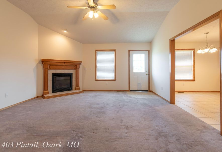 403 East Pintail Drive Ozark, MO 65721 - Photo 6
