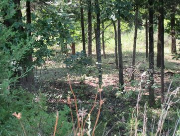 133 Appaloosa Trail Saddlebrooke, MO 65630 - Image 1