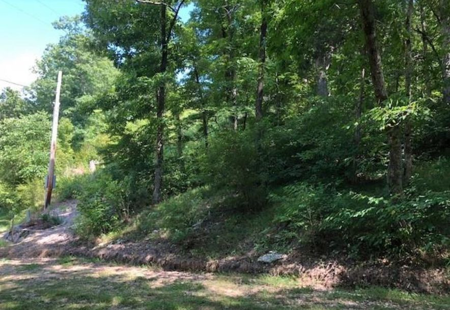Tbd Whispering Cedar Lane F Stella, MO 64867 - Photo 4