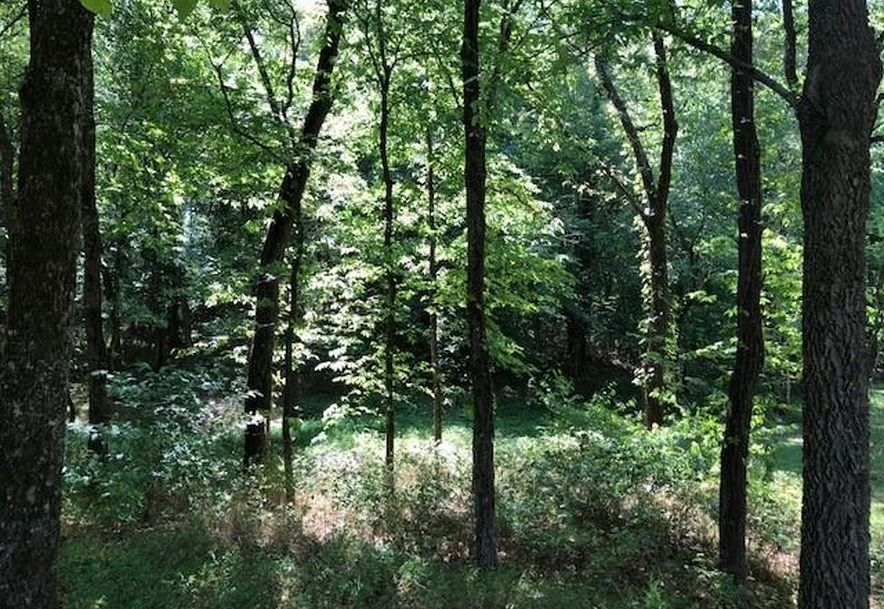 Tbd Whispering Cedar Lane F Stella, MO 64867 - Photo 5