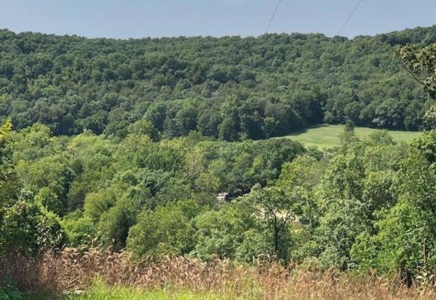 Tbd Whispering Cedar Lane F Stella, MO 64867 - Photo 10