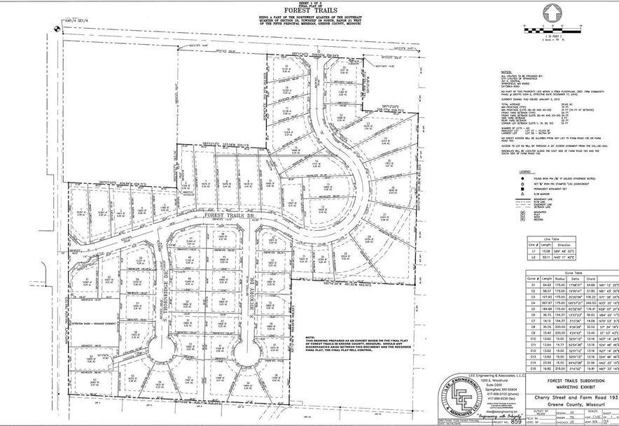 738 South Thornridge Drive Lot 50 Springfield, MO 65809 - Photo 3