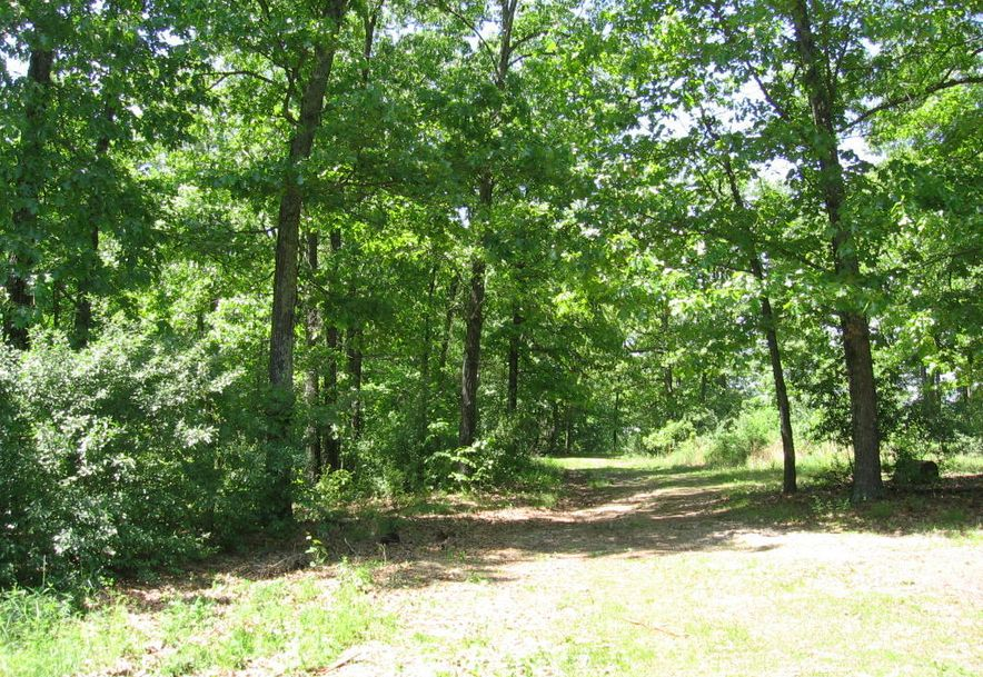 3228 Two Rivers Road Highlandville, MO 65669 - Photo 2