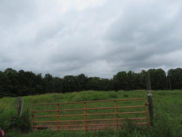 Tbd Ab Fine Cedar Creek, MO 65627 - Image 1