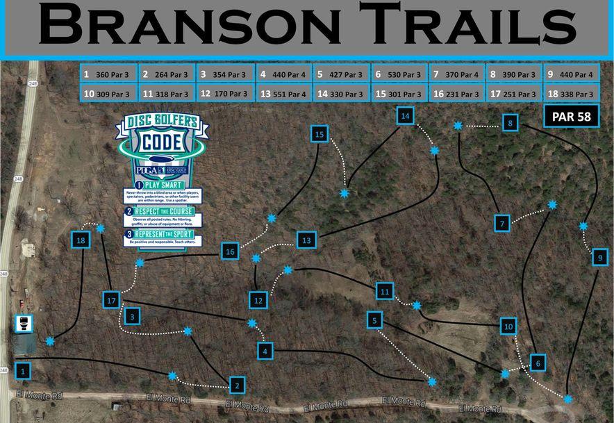 7318 Mo-248 Branson, MO 65616 - Photo 48