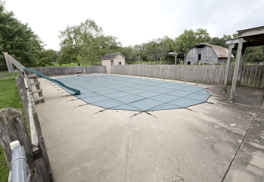 9466 East State Hwy Ad Rogersville, MO 65742 - Photo 4