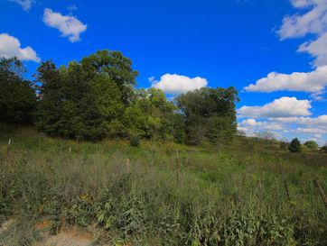 Tbd County Road 4300 West Plains, MO 65775 - Image 1