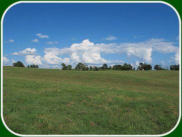 Tbd Collins Road Ozark, MO 65721 - Image 1