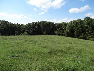 Tract 4 Sycamore Ranch Road Galena, MO 65656 - Image 1