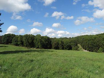 Tract 7 Sycamore Ranch Road Galena, MO 65656 - Image 1