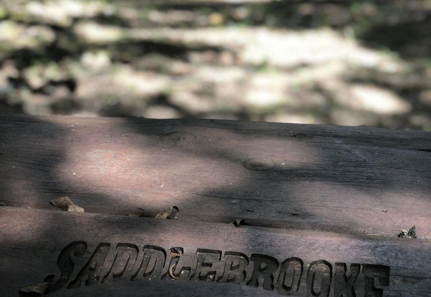 153 Ridgecrest Drive Saddlebrooke, MO 65630 - Photo 92