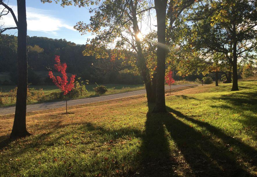 235 Clay Valley Drive Fordland, MO 65652 - Photo 27