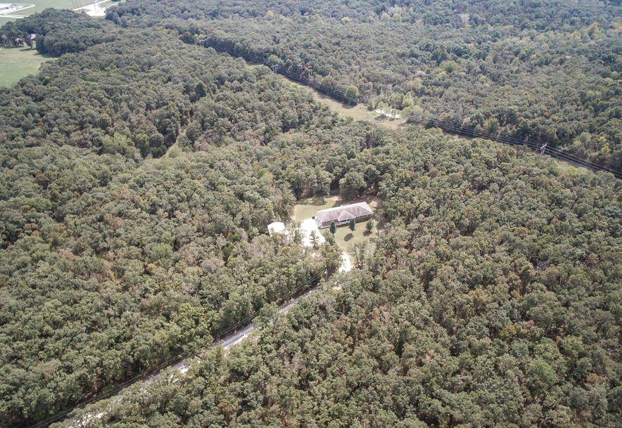 24 Buggy Trail Elkland, MO 65644 - Photo 50