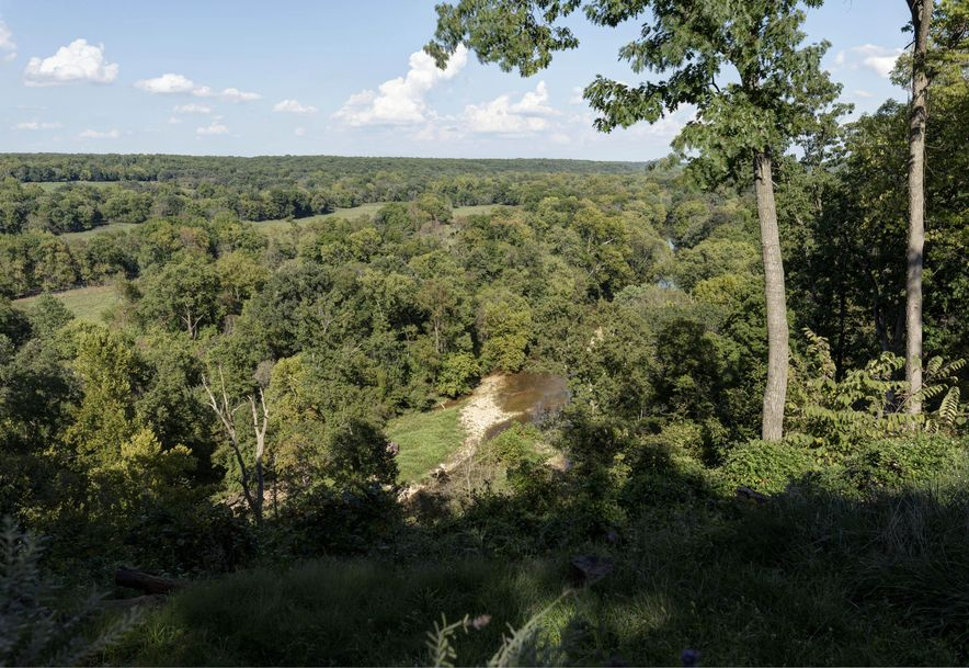 7251 East State Highway D Rogersville, MO 65742 - Photo 26