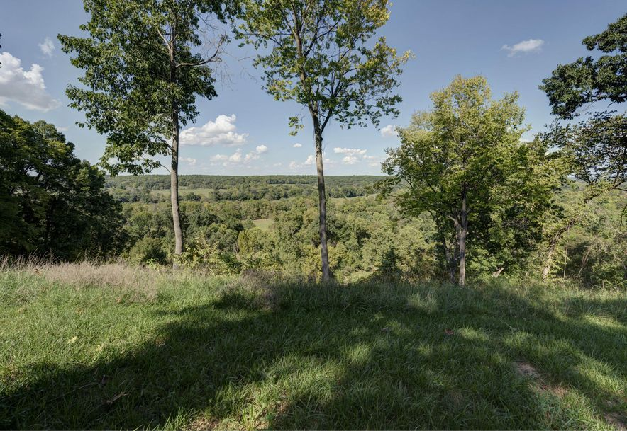 7251 East State Highway D Rogersville, MO 65742 - Photo 9