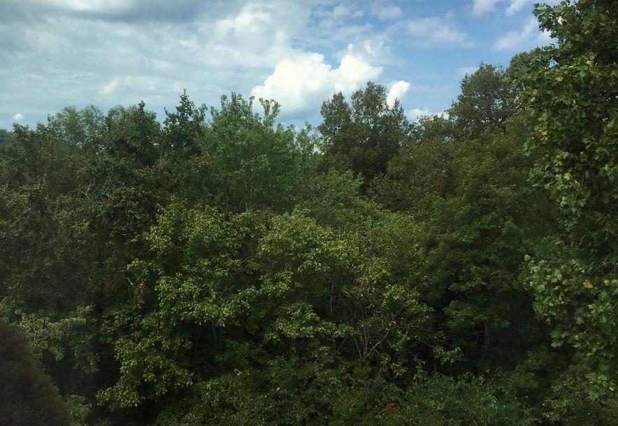 150 Sunken Forest Drive Forsyth, MO 65653 - Photo 13