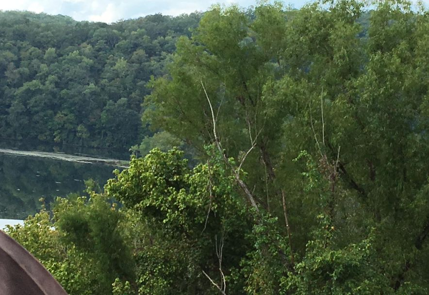 150 Sunken Forest Drive Forsyth, MO 65653 - Photo 15