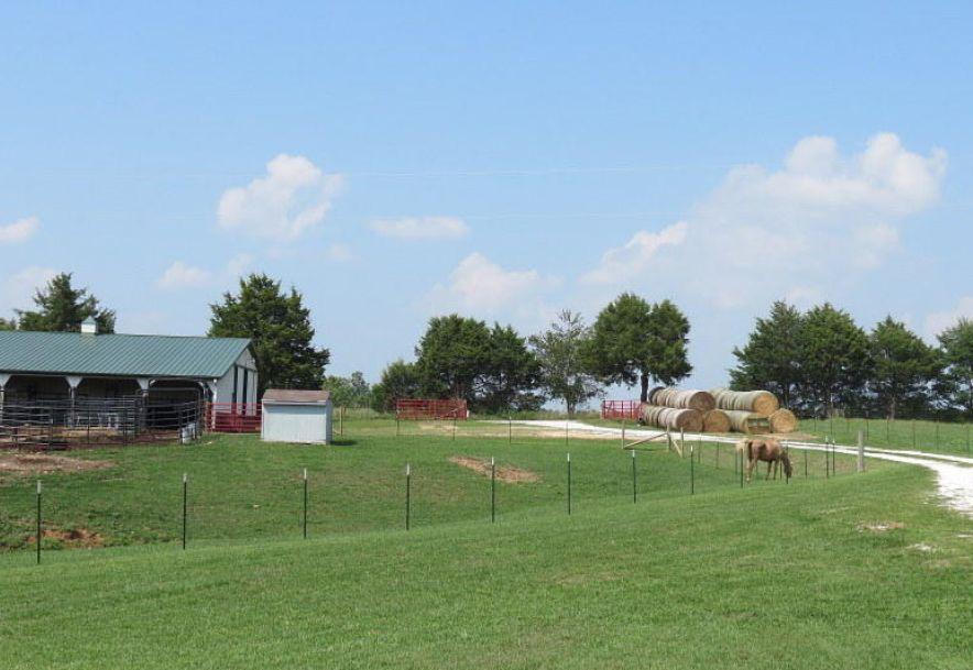 882 Trout Road Ozark, MO 65721 - Photo 62