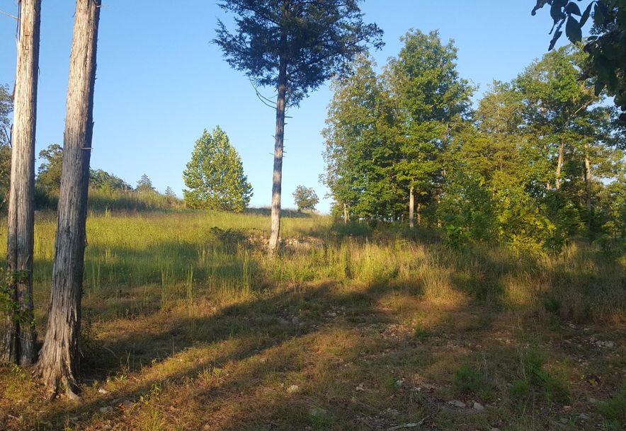 762 Seven Pines Drive Saddlebrooke, MO 65630 - Photo 3