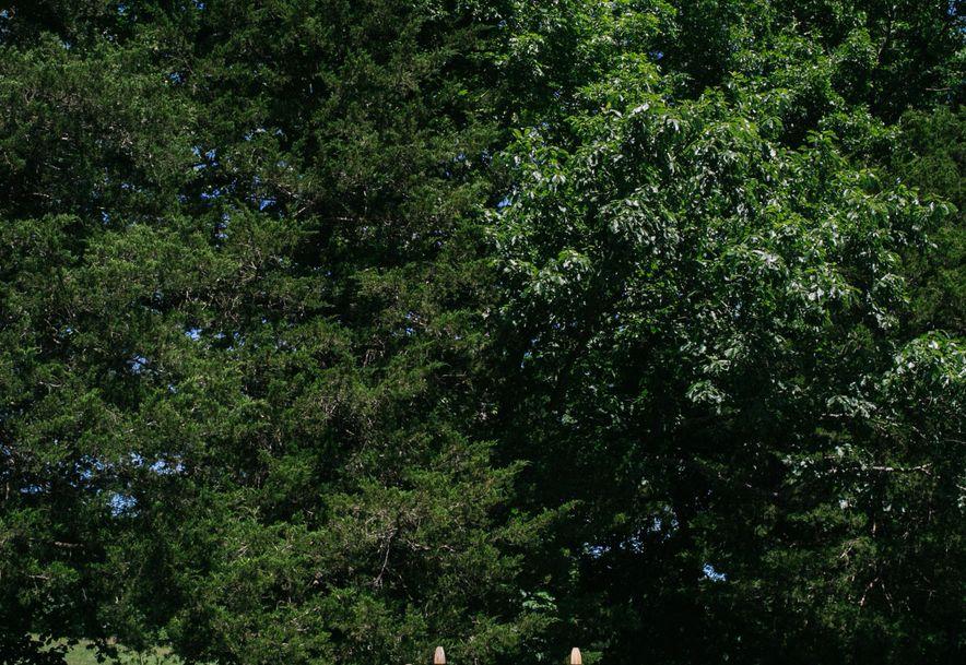 762 Seven Pines Drive Saddlebrooke, MO 65630 - Photo 21