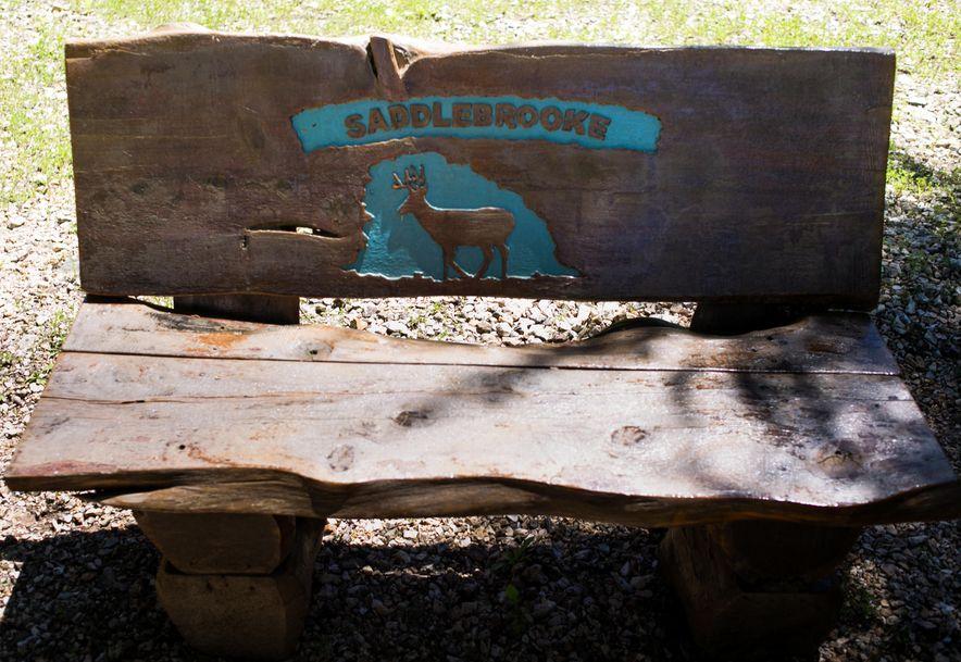 762 Seven Pines Drive Saddlebrooke, MO 65630 - Photo 22