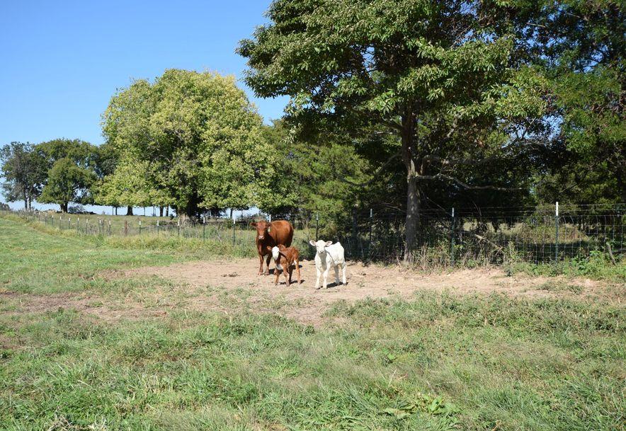 Tbd East State Hwy Aa Springfield, MO 65803 - Photo 73