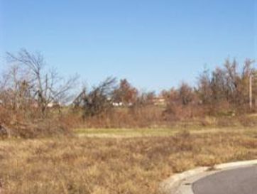 162 West Heritage Court #11 Fair Grove, MO 65648 - Image