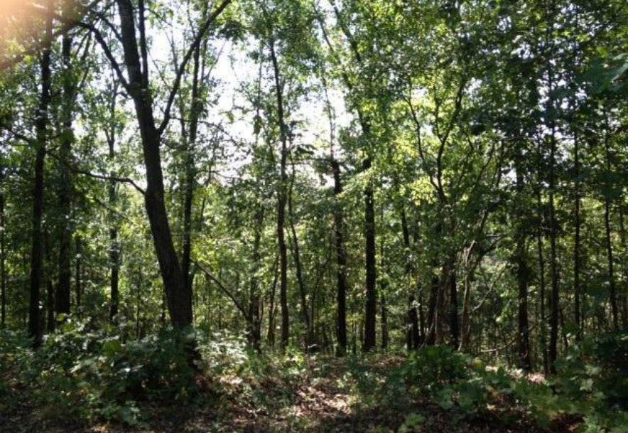 0 Ridgedale Road Highlandville, MO 65669 - Photo 3