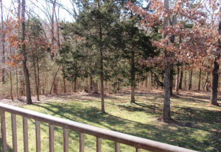 6504 East Iris Meadow Rogersville, MO 65742 - Photo 124