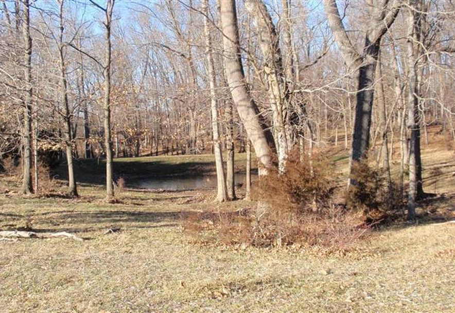 6504 East Iris Meadow Lane Rogersville, MO 65742 - Photo 129