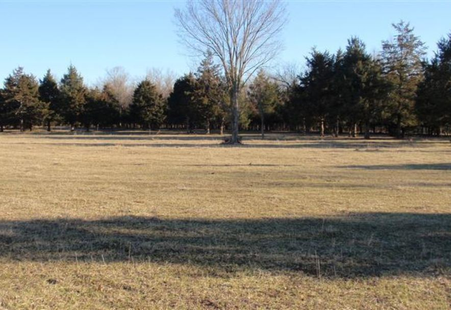 6504 East Iris Meadow Lane Rogersville, MO 65742 - Photo 130