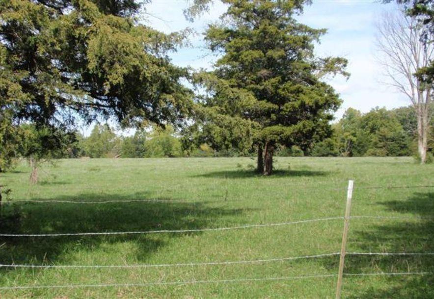 6504 East Iris Meadow Lane Rogersville, MO 65742 - Photo 133