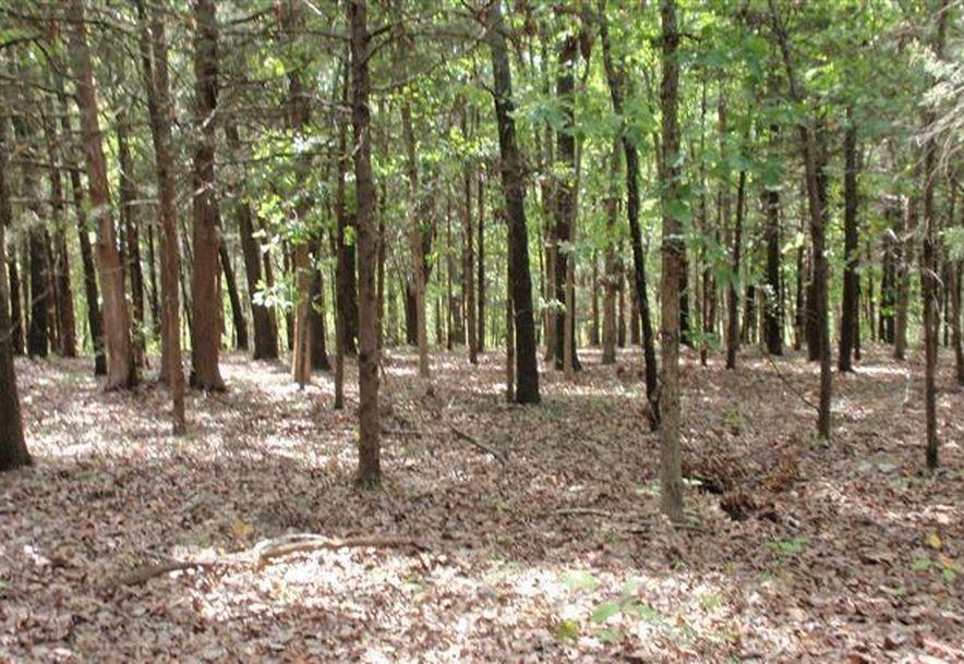 6504 East Iris Meadow Lane Rogersville, MO 65742 - Photo 137
