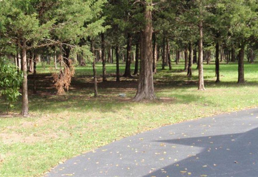 6504 East Iris Meadow Lane Rogersville, MO 65742 - Photo 138