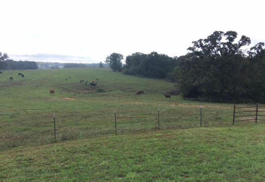 14618 County Road Ee-155 Mountain Grove, MO 65711 - Photo 41