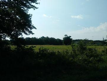 Photo of 3342 Highway M