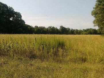Photo of 0 East 334th Road