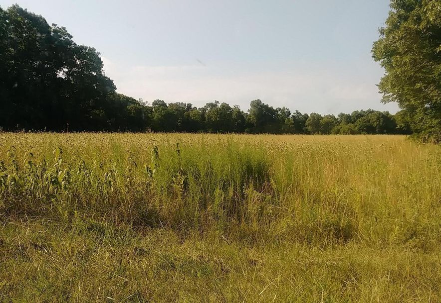 0 East 334th Road Humansville, MO 65674 - Photo 13