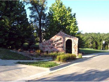 Lot 44 Roark Hills Drive Branson, MO 65616 - Image 1