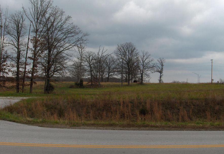 60 Craig Street Reeds Spring, MO 65737 - Photo 8