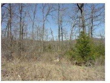 Lot 20 Campground Road Merriam Woods, MO 65740 - Image 1