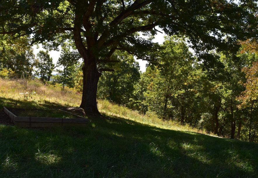 3591 Keystone Road Reeds Spring, MO 65737 - Photo 29