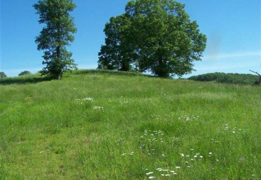 Tbd State Hwy Bb Saddlebrooke, MO 65630 - Photo 1
