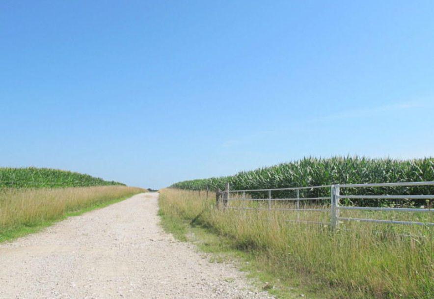 Tbd Highway 83 Flemington, MO 65650 - Photo 3