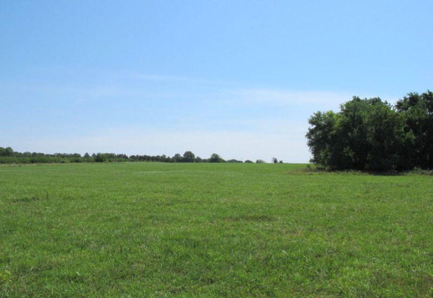 Tbd Highway 83 Flemington, MO 65650 - Photo 48