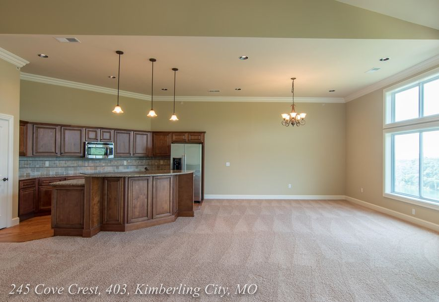 245 Cove Crest #403 Kimberling City, MO 65686 - Photo 6