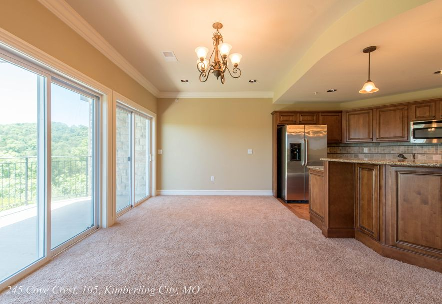 245 Cove Crest #105 Kimberling City, MO 65686 - Photo 14