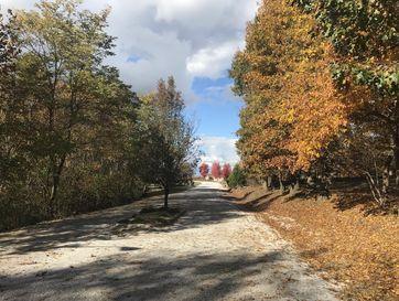 Photo of 1670 Timber Lake Drive