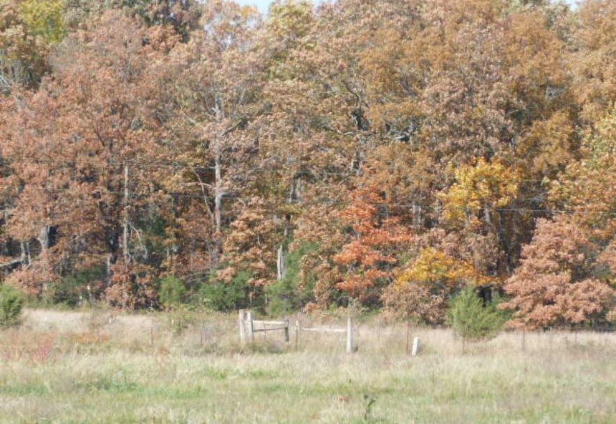 5798 State Highway Bb Seymour, MO 65746 - Photo 18